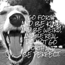 dog-perfect